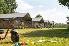 De gezellige en comfortabele safaritenten van #Farm #Camps. #boerderijvakanties