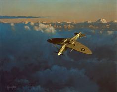 Aviation Art by Alex Hamilton Ww2 Aircraft, Fighter Aircraft, Military Aircraft, Fighter Jets, Mustang, The Spitfires, Aircraft Painting, Airplane Art, Supermarine Spitfire