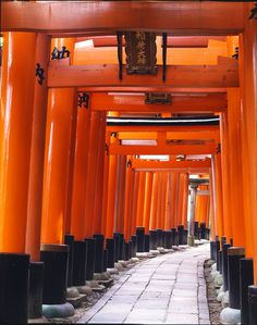 "Fushimi Inari-taisha Shrine, Kyoto, Japan. This intriguing shrine was dedicated to the god of rice and sake by the Hata clan in the 8th century. The magical, seemingly unending path of over 5000 vibrant orange torii gates that wind through the hills behind Fushimi Inari-taisha Shrine makes it one of the most popular shrines in Japan. Christo's ""Gates"" in Central Park  mean more to me now!"