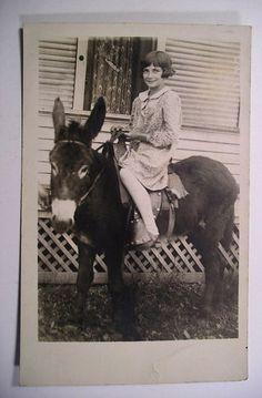 1910 Pony Rides, Zebras, Donkeys, Brown Hair, Old Photos, Black And White Photography, Cowboys, Transportation, Shots
