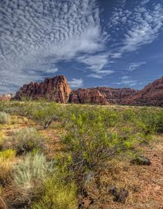 ✮ Snow Canyon, Utah.I want to go see this place one day.Please check out my website thanks. www.photopix.co.nz