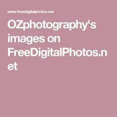 OZphotography's images on FreeDigitalPhotos.net Stock Photo Sites, Stock Photos