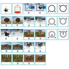 Mirror Stereoscope - 3D Fusion Card Set