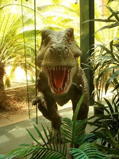 Joel kontinen: Death of a Darwinian Icon: T. Rex Did Not Have Fea...
