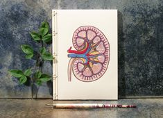 Hand-Crafted Notebooks Combine Beautiful Embroidery with Scientific Illustrations - My Modern Met