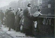 Liffey swim spectators, Dublin.