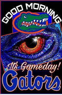 1000 Best Florida Gators images in 2018 | Florida girl