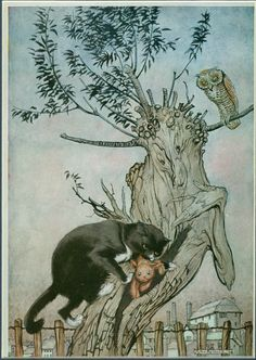 Poor Cecco is written by Margery William Bianco, the author of the Velveteen Rabbit. Poor Cecco was her second book, written in and illustrated by Arthur Rackham. Arthur Rackham, Art And Illustration, Vintage Illustrations, Les Fables, Fairytale Art, Cat Art, Fantasy Art, Fairy Tales, Artsy
