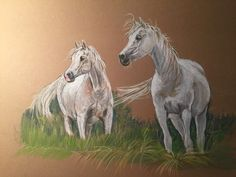 Emandoria and Pistoria, Polish Arabian mares Chalk-Pastel 25x32 cm Photo by Tomasz Emil