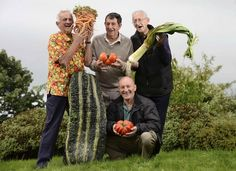 Harrogate UK, Giant Vegetable Competition