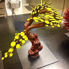 Petit bonsaï en chocolat sculpté à la main...!!! #Patisserie #lemeuriceparis #palace #paris #sculpture #chocolat #artistique #bonsaï #précision #partage #passion #plaisir by maxime.frederic