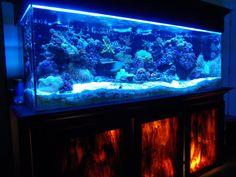 Diy Aquarium Stand Reef Central
