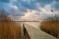 Rico Ködder - Steg mit Schilf an einem See