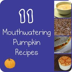 10 Most Mouthwatering Pumpkin Recipes - Mindfully Frugal Mom