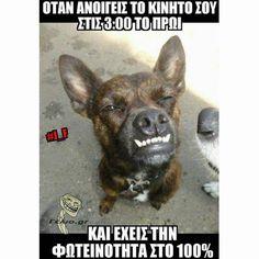 """359 """"Μου αρέσει!"""", 4 σχόλια - @international_quotess στο Instagram: """" #greekquote #greekquotes"""""""