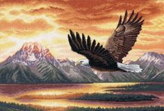 Amazon.com: Dimensions Needlecrafts Counted Cross Stitch, Silent Flight: Arts, Crafts & Sewing