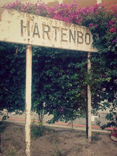 Hartenbos, Western Cape  South Africa♡