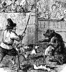Bear-baiting was popular in England until the 19th century. From the 16th, many bears were maintained for baiting. In its...
