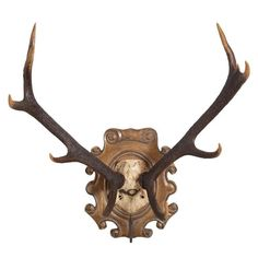 Loyal Trophy Shield Plaque Roe Buck Stalking Traditional Oak Wall Deer Red Horn Plate Sporting Goods