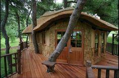 Sweet retreat suit tree house