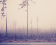 Pastel morning mist photo  8x10 inches photo on by jesperwilson, $20.00