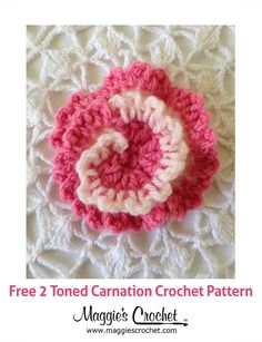 Two-Tone Carnation Free Crochet Pattern