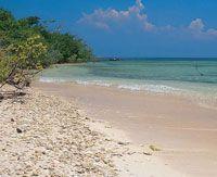 En la bahía de Cartagena se encuentran playas con arenas de diversos tipos. Playa con arenas de origen coralino en las islas del Rosario.