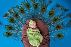 Monthly Baby Photos, Newborn Baby Photos, Baby Poses, Baby Girl Newborn, Newborn Baby Photography, Newborn Photographer, 1 Month Baby, Fall Baby Pictures, Peacock Baby