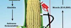 Industria de etanol vuelve a expandirse en Estados Unidos