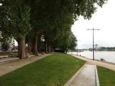 Le parc de l'Île au cointre, ce sont 11 200 m² dédiés à la promenade et au sport pour les Alfortvillais.