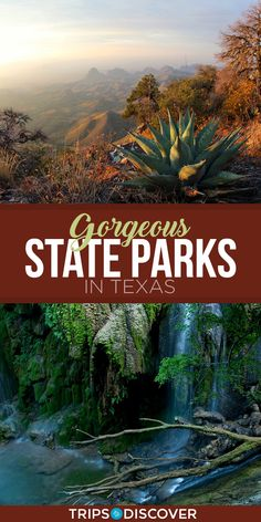 Texas is a big state and this means lots of land for beautiful state parks, over 90 to be exact. There are many gorgeous state parks in the Lone Star State but here are 12 picks you definitely want to see at least once in your lifetime. Hiking In Texas, Texas Travel, Travel Usa, Texas Roadtrip, Camping In Texas, Van Camping, Travel Plane, Disney Travel, Alaska Travel
