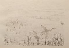 "Geese Rising by Charles Murray Adamson (1820-1894) Pen and ink drawing on paper In a cream conservation grade mount (matt) ​In good condition, as illustrated ​Drawing: 17.3 x 24.8 cm (visible); mount: 28 x 35.5 cm (11"" x 14"")"
