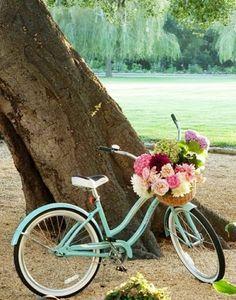 bike + flowers