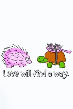 Love Will Find a Way Turtle Turtles