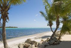 Every beach in the Caymans is open to the public. Here are your best bets for sun, surf and sand on Grand Cayman and beyond.