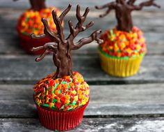 End of Fall Cupcakes