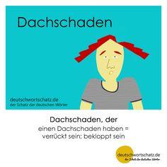 Dachschaden - deutschwortschatz.de / der Schatz der deutschen Wörter