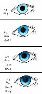 Coloring Eyes part 2 - Realistic Eyes - bjl