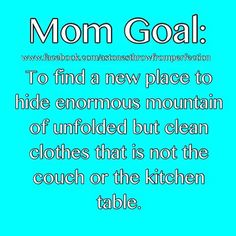 Mom Goal for laundry.  Because you know, company's coming.
