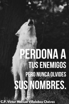 """""""Forgive your enemies but never forget their names. Wolf Quotes, Wisdom Quotes, Me Quotes, Motivational Phrases, Inspirational Quotes, Der Steppenwolf, Quotes En Espanol, Spanish Quotes, Thoughts"""