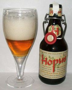 Lefebvre Hopus