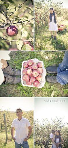 Apple picking fall engagement #engagement #posing #fall