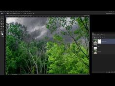 ▶ Photoshop - How  to Remove Fringing when Replacing Skies - YouTube  (This is an *excellent* tutorial that will guide you through the process to yield the final results you want, without white fringing around tree limbs, etc.)