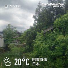 おはようございます! 5月最終日、気がつけば緑が濃くなってます~♪