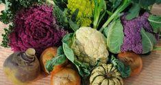 Alimentos Para Dieta Ricos em Queratina