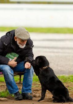 DeRose & dogs      source: https://www.facebook.com/photo.php?fbid=291116547610921&set=a.180186548703922.57397.100001377338302&type=1&theater