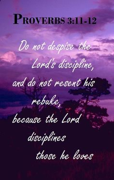 Proverbs 3:11-12 (NIV) -My son, do not despise the Lord's discipline, and do not resent His rebuke,because the Lord disciplines those He loves, as a father the son he delights in.
