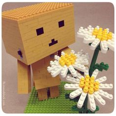 nanoblock Danbo checking out nanoblock Daisies ^^