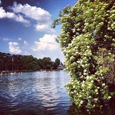 Paris, bois de Boulogne