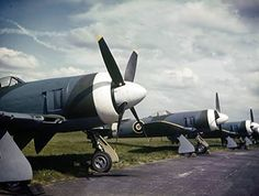 New Tempest Mk.IIs of the first production batch at Hawker Aircraft, showing the clean, closely cowled engine and the carburettor and oil-cooler intakes in the starboard wing's inner leading edge.